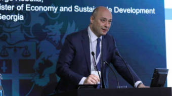 Minister of Economy: Aliens are allowed to rent the land for a period of 50 years