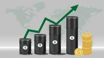 Crude oil prices steadied